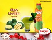 Shreeguruji - Tasteful Badam Kesar & Kerry Pudina