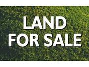 Industrial Project Land Sale in Digha