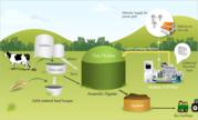Biogas Power Plant Supplier